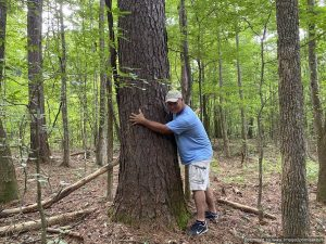 hunting-land-for-sale-in-copiah-county-ms
