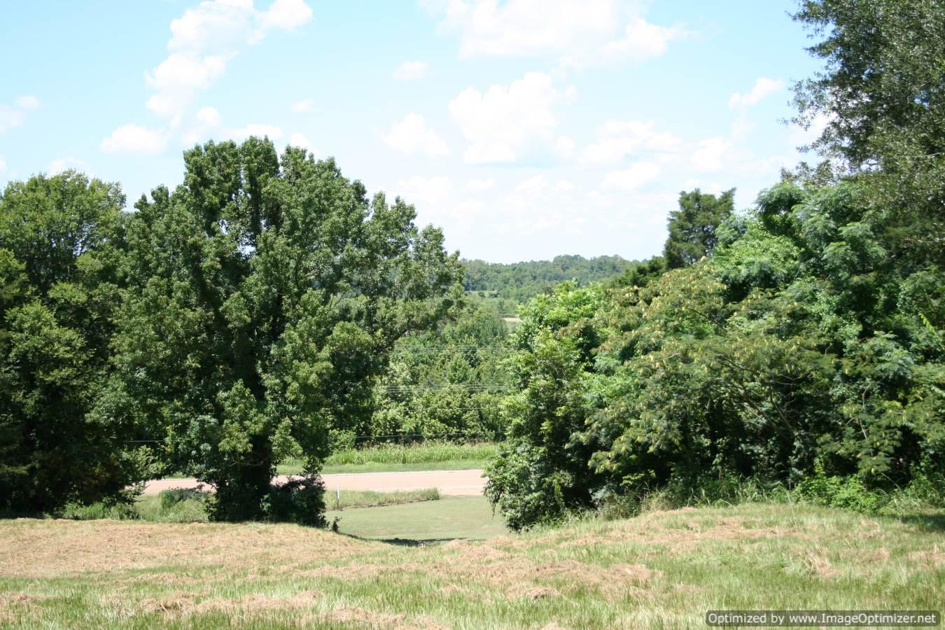 Yazoo-County-Land-For-Sale