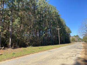 hunting-land-amite-county-ms