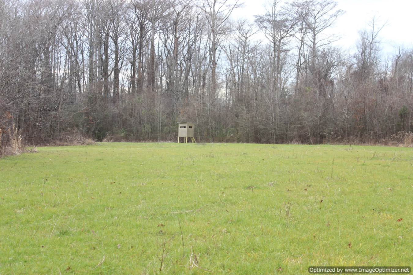land-for-sell-madison-county-ms