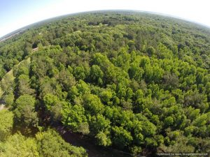 land-for-sale-madison-co-ms