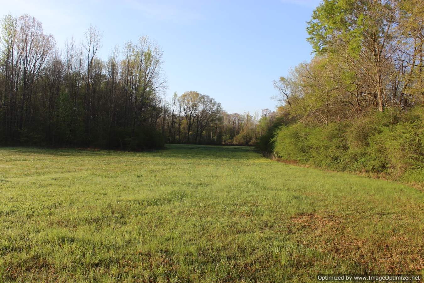 land-for-sale-attala-county-ms