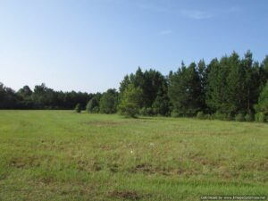 and-for-sale-in-leake-county-ms