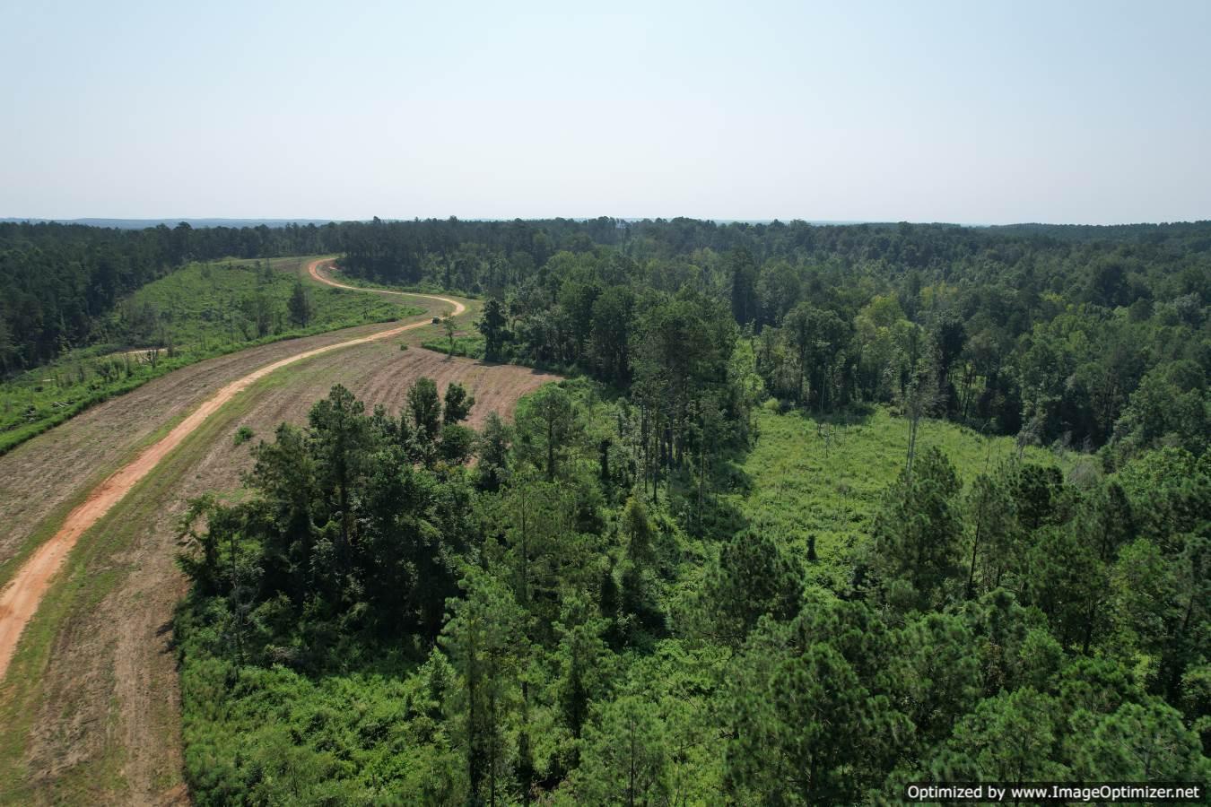 land-for-sale-jasper-county-ms