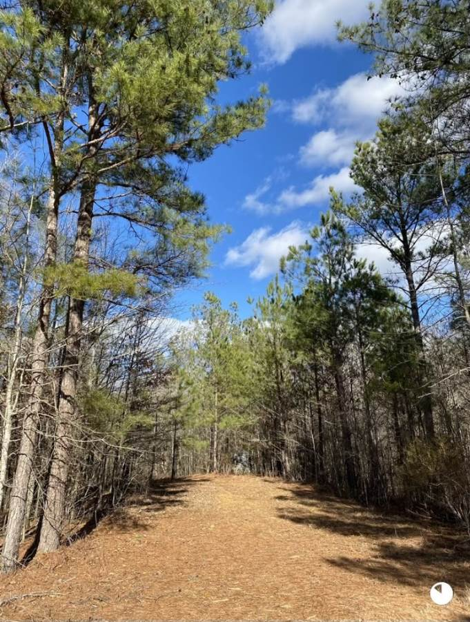 home-for-sale-in-Attala-county-MS