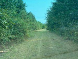 hunting- land-for-sale-in-winnsboro-louisiana